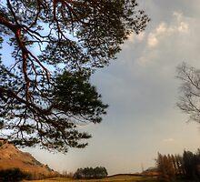 Blea Tarn by Stephen Smith