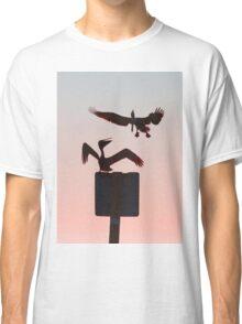 Quick...it's postcard time! - Pelicans Classic T-Shirt