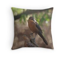 Great-tailed Grackle - Female Throw Pillow