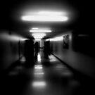 Shadows of Academia  by Joseph  Tillman