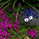 There's a whats-it in my garden.........? by Roy  Massicks