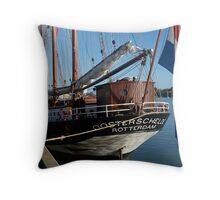 Oosterschelde.....Don't try saying this if you have false teeth......! Throw Pillow