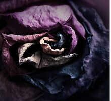 Dark Gothic Rose Style Case by ARTificiaLondon