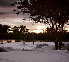 Park At Twilight by WeeZie