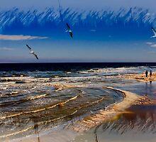 A Walk On The Beach by CarolM