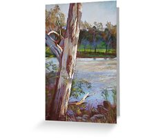 Portrait of a River Gum Greeting Card