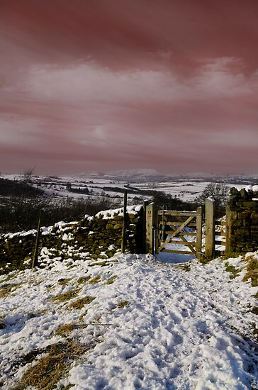 Views To Pendle Hill by Stephen Smith