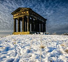 Penshaw Monument by English Landscape Prints