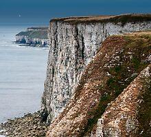 Bempton Cliffs by Stephen Smith