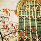 Gothic window by ForeverFrodo