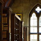 Gothic Library by ForeverFrodo