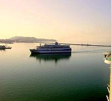 Ferry going into Livorno  by printerbill