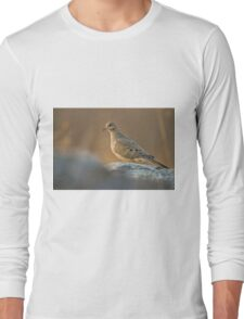 Mourning Dove On Rock T-Shirt