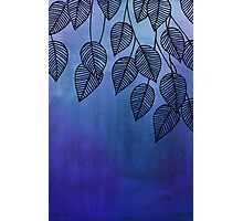 Midnight Blue Garden - watercolor & ink leaves Photographic Print