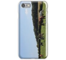 Grazing Cows iPhone Case/Skin