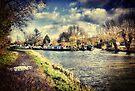 River Stort at Sawbridgeworth by Nigel Bangert
