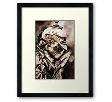 Armour plated Framed Print