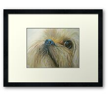 Cheeky chappy Framed Print