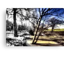 Winter turns to Spring Canvas Print