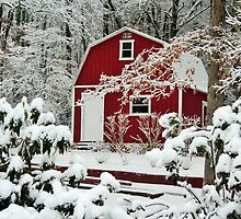 A Different View of the Red Shed in Snow by gt6673