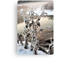 Winter landscape in snow Canvas Print