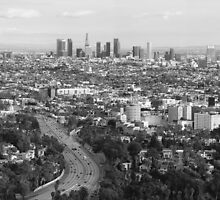 Los Angeles Basin And Los Angeles Skyline Panorama Monochrome by Ram Vasudev