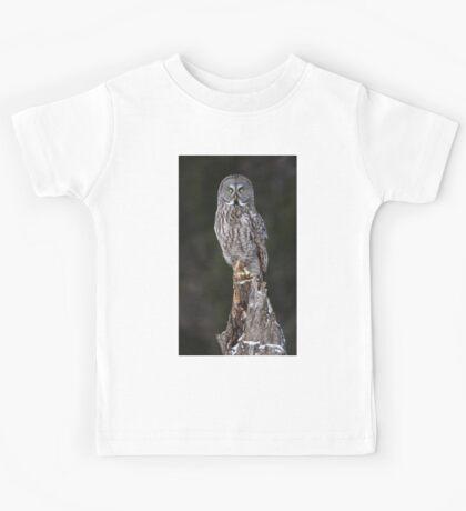 The Phantom - Great Grey Owl Kids Tee