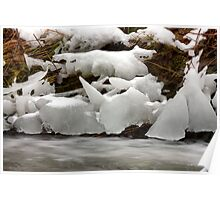 Icicles forms Poster