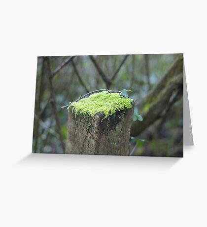 Mossy cap Greeting Card