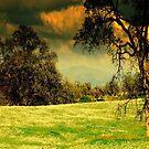 Hidden Valley by davesdigis