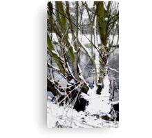 Snow Theme - Tree Views Canvas Print