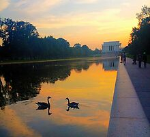 Reflection Pool Washington, DC by KasisCake