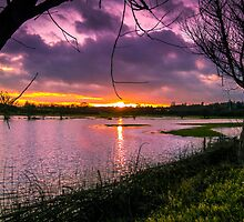Flooded Sunset by John Evans