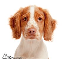 Freckles  by Mark Cooper