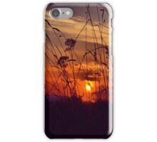 Sunset with Grass iPhone Case/Skin