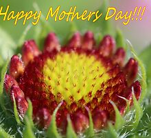 Happy Mothers Day by Keala