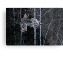 Hover - Great Grey Owl Metal Print