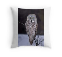 Perched - Great Grey Owl Throw Pillow