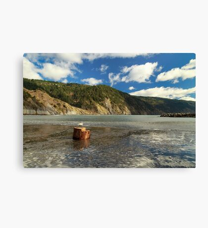 Shelter Cove Canvas Print