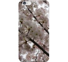 Spring is Beautiful - A Cloud of Pastel Pink Blossoms iPhone Case/Skin