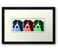 Bernese x 3 Framed Print