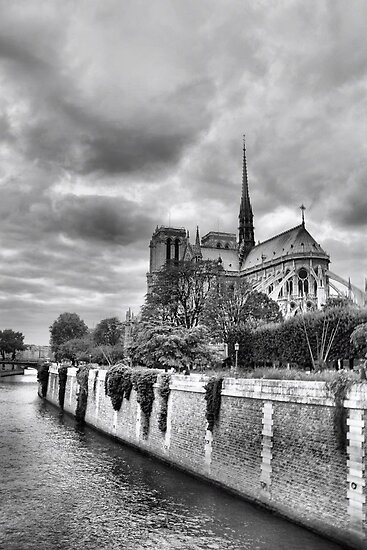 Notre-Dame in HDR by Rosalee Lustig