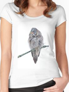 Just chillin - Great Grey Owl Women's Fitted Scoop T-Shirt