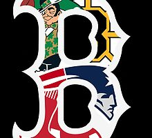 Boston Bruins, New England Patriots, Boston Celtics, Boston Red Sox by Danny  Porter