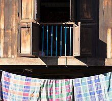 village house by Anne Scantlebury