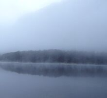 Lake McKellar in fog (panoramic) by tanyadann