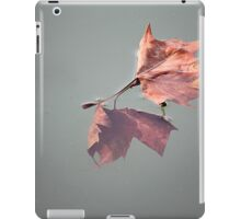 Above and below. iPad Case/Skin