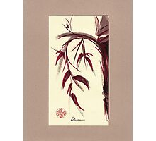 MUSE - Original Zen Ink Wash Sumi-e Asian Bamboo Painting Photographic Print