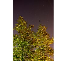 Where The Trees Meet The Stars Photographic Print