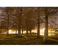 Ghostly Trees Along A Lake Photographic Print